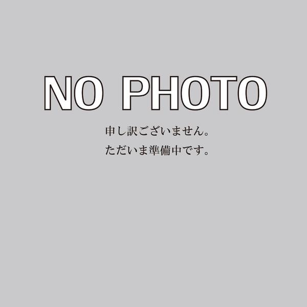 新築戸建  / 酒田市亀ケ崎7丁目 A区画
